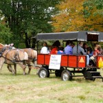 Carriage ride at Pettengill Farm Day