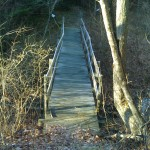 Quarry_Woods-QW-bridge